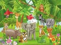 djur i vildmarken - m ....................