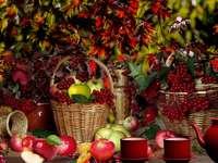 Récolte d'automne de pommes et de baies - Récolte d'automne de pommes et de baies