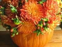 Une citrouille comme vase à fleurs pour les asters