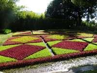 Top giardino funchal