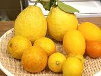 Πιάτο με λεμόνια - Πιάτο με πολλά λεμόνια.
