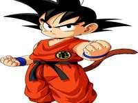 Goku Small