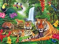 диви животни