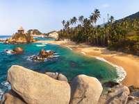 Plaja cu palmieri