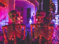 two skeleton near white concrete building - two skeleton near white concrete building with string lights at daytime. .