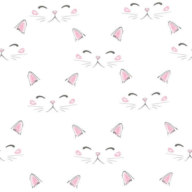 Pisicile se confruntă - pisici albe foarte frumoase ca pentru un ***** (9×9)