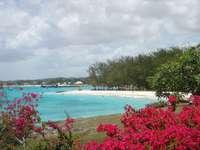 Oistins ..... - Oistins - une ville sur la côte, sur l'île de la Barbade. Situé dans la partie sud de la par