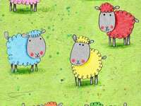 Kleurrijke schapen