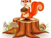 imagem do esquilo