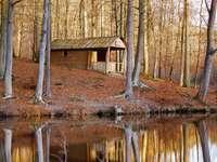 hnědý dřevěný dům poblíž vodního útvaru a stromů