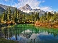 Lago nas montanhas - Montanha árvores lago céu