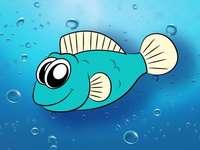 Meus peixes animais marinhos