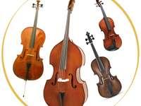 Instrumentos da família de cordas - violino, viola, violoncelo, contrabaixo