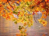 Есенно спокойствие