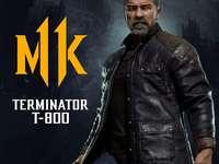 Εξολοθρευτής MK 11