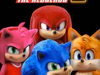 Sonic is lightning fast - Mega sonic amy rose knuckles tails