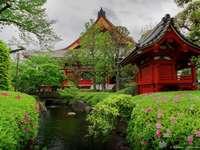 in Japan - m ...................