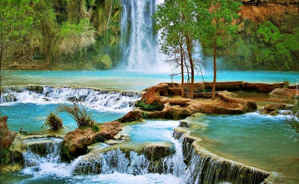 Изглед - Природа вода дърво каскада (11×7)