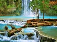 Visão - Natureza cascata de árvores de água