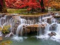 bela cachoeira - padrão de flor de árvore de água colorida