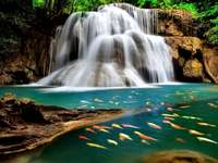 view - nature waterfall colorful fish