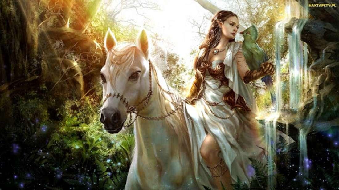 момиче на кон - бял кон момиче природа (10×6)