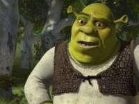 Shrek bonis