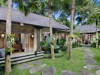 Trópusi ház