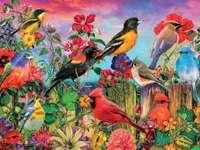 птици на оградата