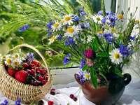 flores do campo - m ........................