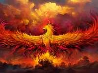 Phoenix dühöngött