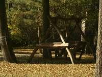 есенна люлка - Есен в езерото Розане