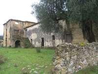 ruiny farmy