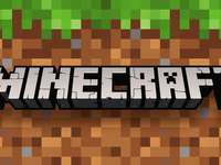 Minecraft B)