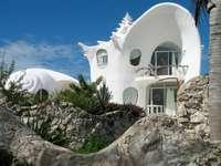 Una casa di conchiglie bianche - Una casa di conchiglie bianche