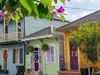 Цветни къщи в Ню Орлиънс