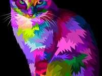 Színes macska festés