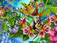 Colorful painting butterflies - Colorful painting butterflies