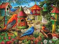 πουλιά σε τροφοδότες - Μ ...........................