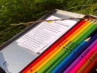 Regenboog in het gras