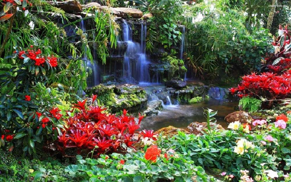 водопад - червени цветя, водопад (11×7)