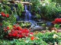 cascata - flores vermelhas, cachoeira