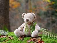 Den plyšového medvídka - Uspořádejte hádanky připravené na Den medvídků. Stejně jako oslavujete během svých narozen