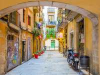 Barcelona old town alley