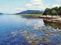 alberi verdi accanto al fiume sotto il cielo blu durante il giorno - Immagine scattata dentro e intorno a Lismore, Port Appin e Barcaldine, Highland scozzesi e isole, Sc