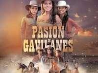 Χαρακτήρες από το telenovela Pasión de gavilanes