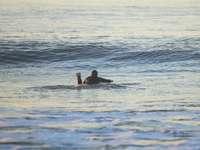 ember a nap folyamán a vízben - 54. utca, Newport Beach, Egyesült Államok
