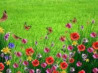 flori de luncă