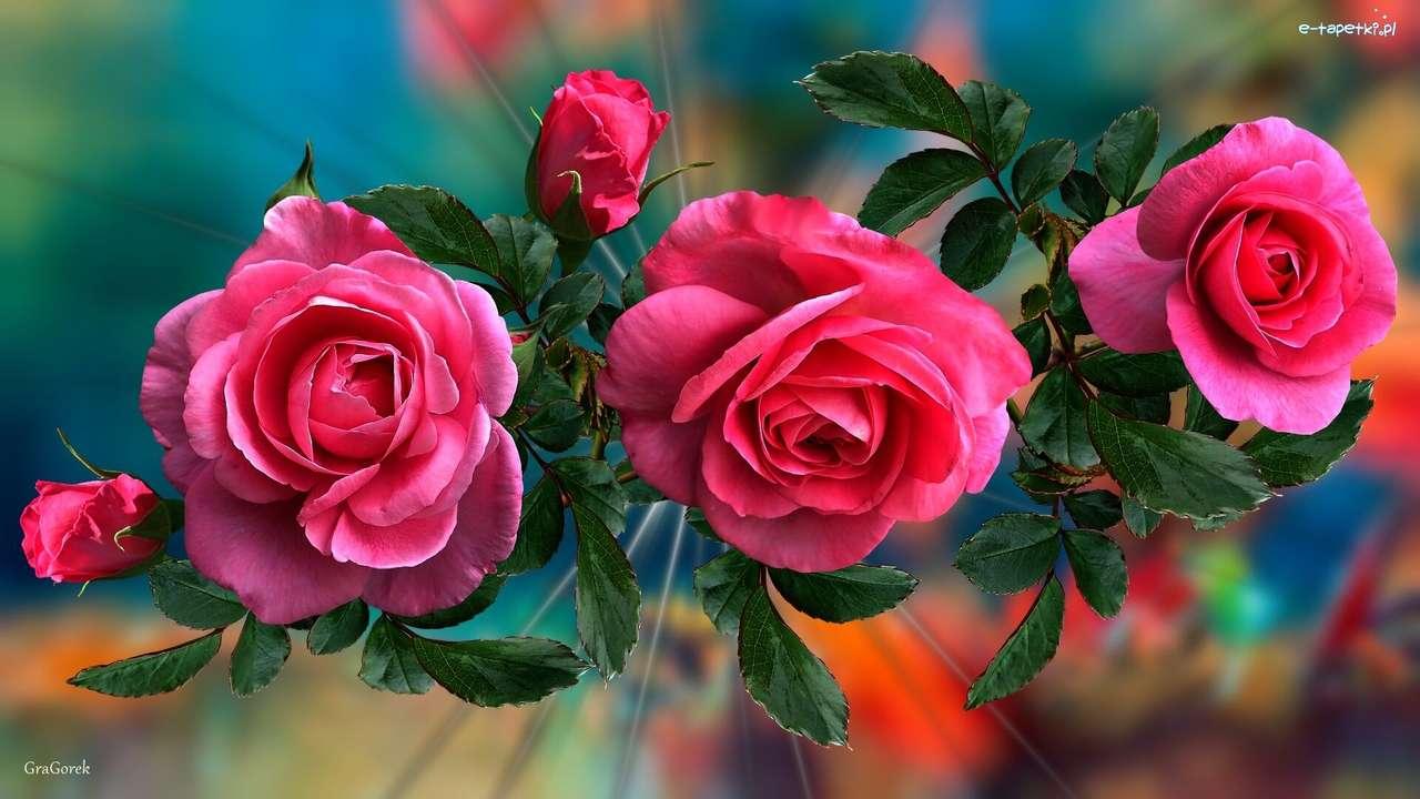 розови рози - м (14×8)