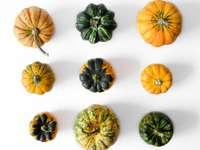 narancssárga és zöld sütőtök fehér felületen - Dekoratív sütőtök fehér háttér.
